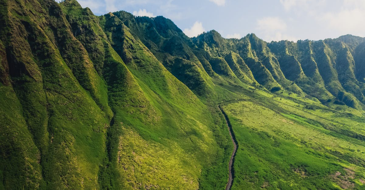 A close up of a lush green hillside with Koʻolau Range in the background